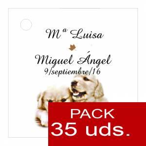 Etiquetas impresas - Etiqueta Modelo B16 (Paquete de 35 etiquetas 4x4)